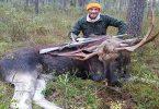 طريقة الصيد بالمطاردة