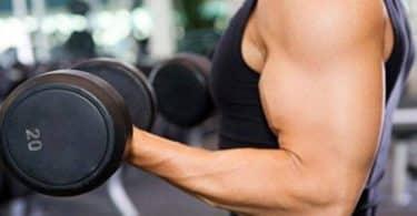 طريقة زيادة الوزن بالرياضة