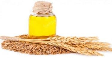 فوائد حبوب القمح لزيادة الوزن