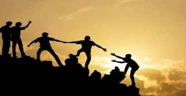 بحث عن التعاون والأخوة