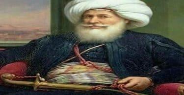 بحث عن محمد علي باشا الكبير