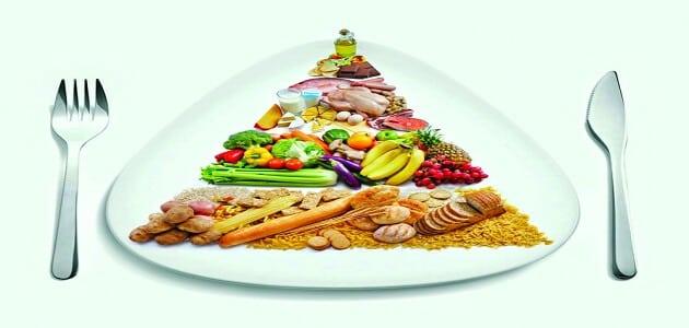ما أهمية الغذاء الصحي لجسم الإنسان