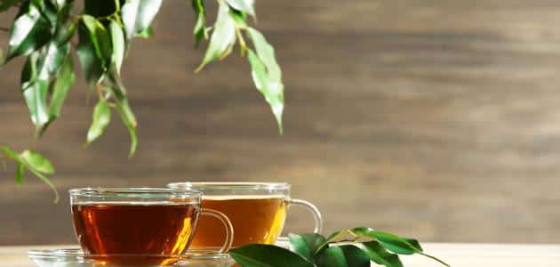 what are the damages of tea