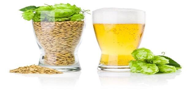 تأثير الكحول على جسم الانسان