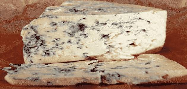 فوائد ومضار الجبنة الزرقاء