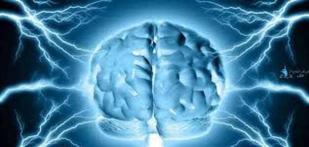 ما هو تعريف العقل
