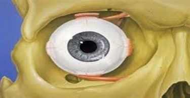 ما هي جراحة محجر العين