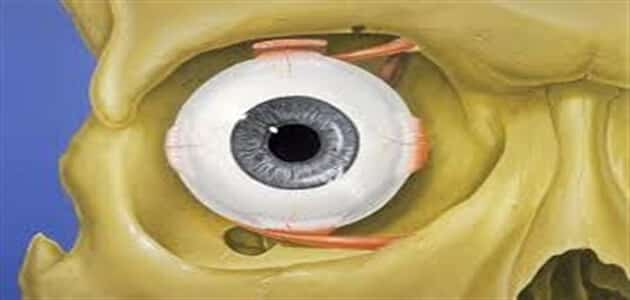 What is eye surgery?