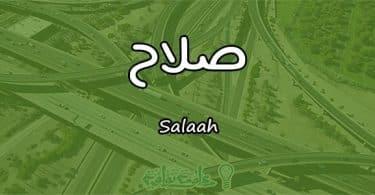 معنى اسم صلاح Salaah حسب علم النفس