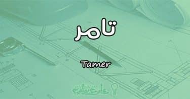 معني اسم تامر Tamer وأسرار شخصيته