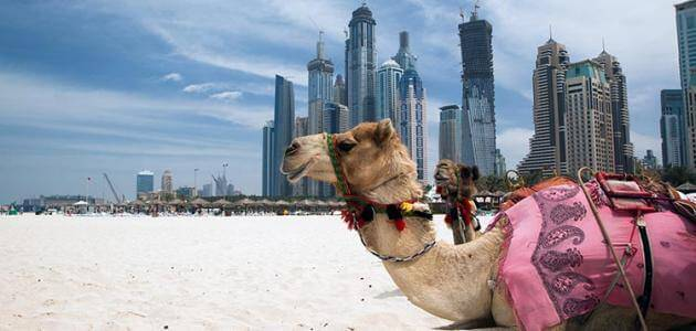 أين موقع دولة الإمارات العربية المتحدة