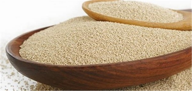 What are the benefits of beer yeast and its damages