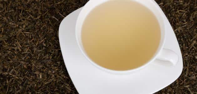 فوائد الشاي الأبيض وأسراره