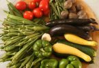 كيف تخزن النباتات الغذاء