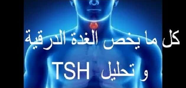 What does tsh analysis mean