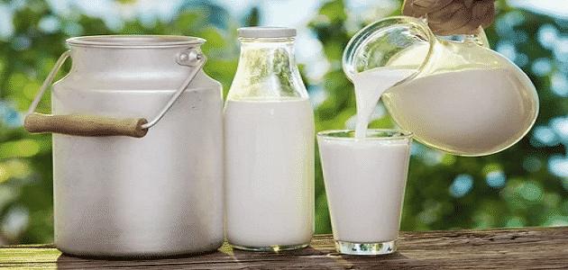 what ingredients milk