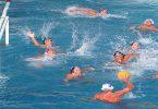 ما هو عدد لاعبي فريق كرة الماء
