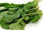 ما هي فوائد نبات الجرجير