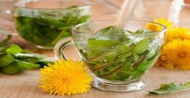 التخلص من الماء الزائد في الجسم بالأعشاب