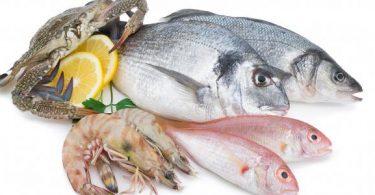 تفسير حلم شراء السمك