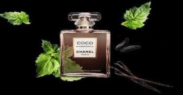 معلومات عن برفان كوكو شانيل Coco Chanel وسعره