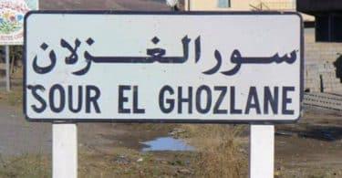 أين توجد مدينة سور الغزلان