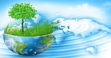 ما هو دور القدوة في التعامل مع البيئة