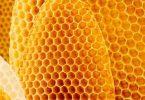 ما هي فوائد شمع النحل