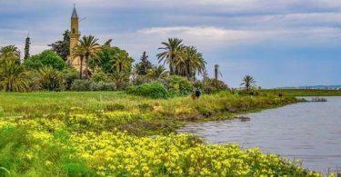 بحث عن دور الإسلام في المحافظة على البيئة