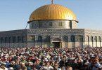 بحث عن قضية فلسطين كامل