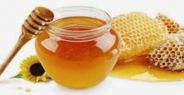 علاج قرحة المعدة بعسل النحل