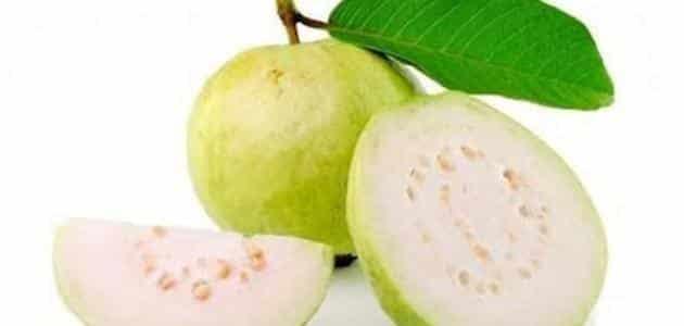 فوائد الجوافة وأضرارها