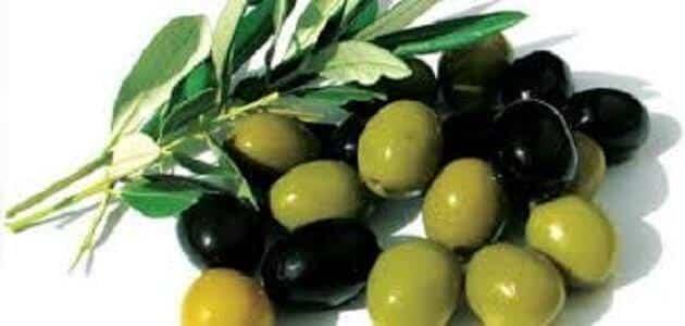 فوائد الزيتون المخلل واضراره
