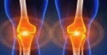 كيف تتحرك العضلات والعظام والمفاصل