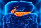 امراض البنكرياس واعراضها وعلاجها