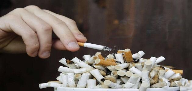 بحث عن التدخين مع المراجع 1