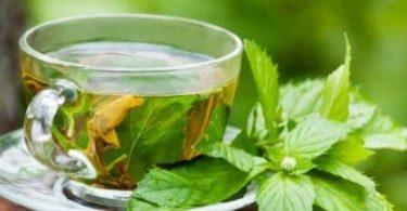 فوائد الشاي الأخضر بالنعناع قبل النوم