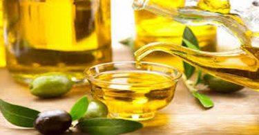 فوائد زيت الزيتون للشعر الخفيف وطريقة استخدامه