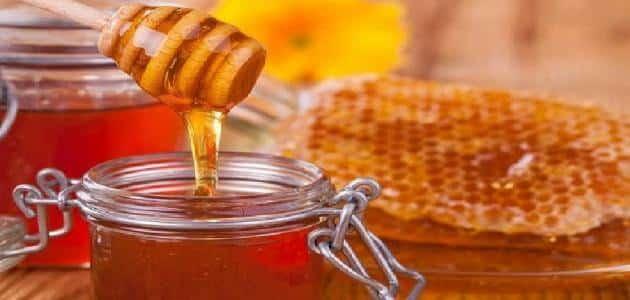 فوائد ومضار عسل الكينا