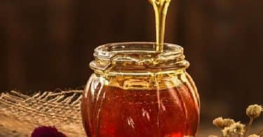 عسل النحل