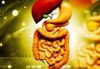 ما هي أنواع أمراض الجهاز الهضمي ؟