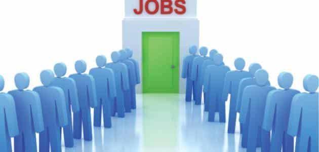 ما هي حلول البطالة وكيفية القضاء عليها ؟