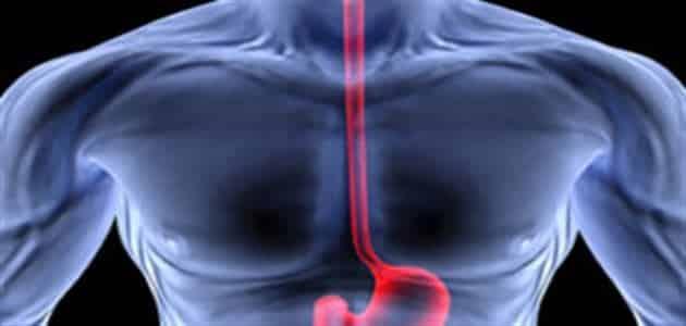 علاج الحرقان الصدري في المنزل