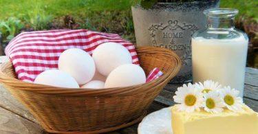 علاقة البيض واللبن بالبرد