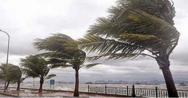 ما اسم الرياح التي تهب على خط الاستواء بقوة؟