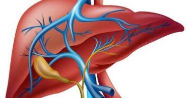 ما معنى احتقان الكبد