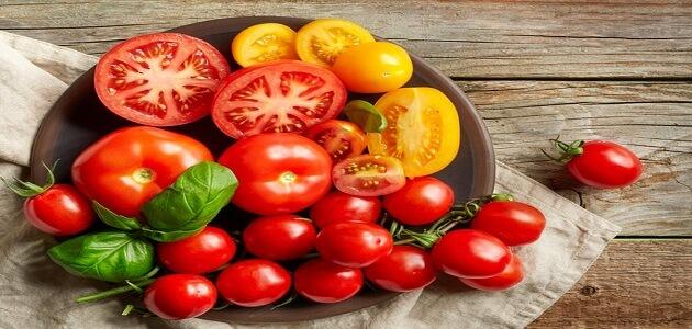 ما هو اصل كلمة طماطم