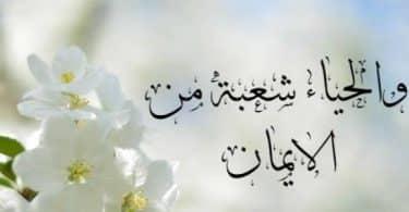 اذاعه عن الحياء قصيره