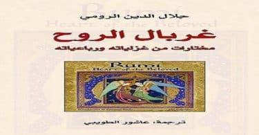 اسماء كتب جلال الدين الرومي