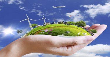 بحث عن انتقال الطاقة في النظام البيئي pdf (1)